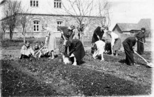 Laekvere kooli aed, lapsed aiatööl, ERM Fk 2854:82, Eesti Rahva Muuseum, http://www.muis.ee/museaalview/645090.