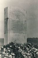 Monument II maailmasõjas langenute vennashaual Ao kalmistul, RM F 1341:4, SA Virumaa Muuseumid, http://www.muis.ee/museaalview/1382062.