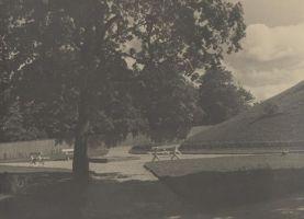 Rakvere, Kreutzwaldi tänava ja Vallimäe vaheline ala, kuhu hiljem püstitatakse hiljem monument. Foto: Carl Sarap, 1935-1937. RM F 949:46, Virumaa Muuseumid SA, http://www.muis.ee/museaalview/2563790.
