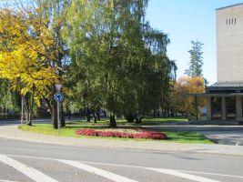 Foto: Heiki Koov, oktoober 2010.