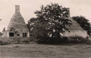 Kaarli mõisa varemed, 1956. DrKM F 101:2/n, Dr.Fr.R.Kreutzwaldi Memoriaalmuuseum, http://www.muis.ee/museaalview/976221.