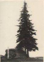 Kivi kõrval on püsti valge sammas (mis sammas see oli, mis on sellest saanud?). DrKM F 83:3, Dr.Fr.R.Kreutzwaldi Memoriaalmuuseum, http://www.muis.ee/museaalview/974747.