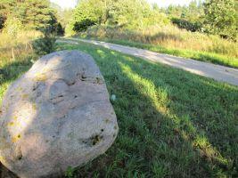 Tee kivi ees 2. Foto: Heiki Koov, august 2010.