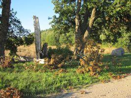 Augusti 2010 tormid murdsid kivi ümbruses mitmeid puid. Foto: Heiki Koov, august 2010.