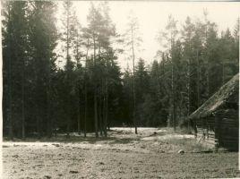 Eduard Vilde sünnikoht Pudiveres , RM F 498:5, SA Virumaa Muuseumid, http://www.muis.ee/museaalview/1756296.