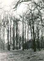 Varangu, kunstnik E. Viiralti kodu, 1978. RM F 1207:1, SA Virumaa Muuseumid, http://www.muis.ee/museaalview/1456864.