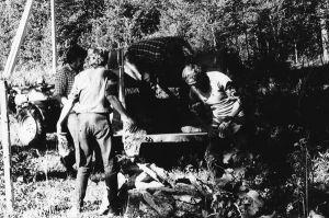 Kivid saadi Leemeti talu kiviaiast.