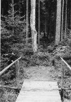 Valmiv monument asub üle silla metsa sees.