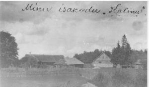 Hans Kuriksi sünnikoht. Vinni NST arhiiv.