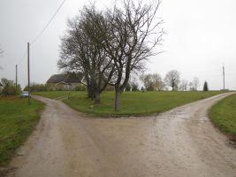 Foto: Heiki Koov, oktoober 2011.